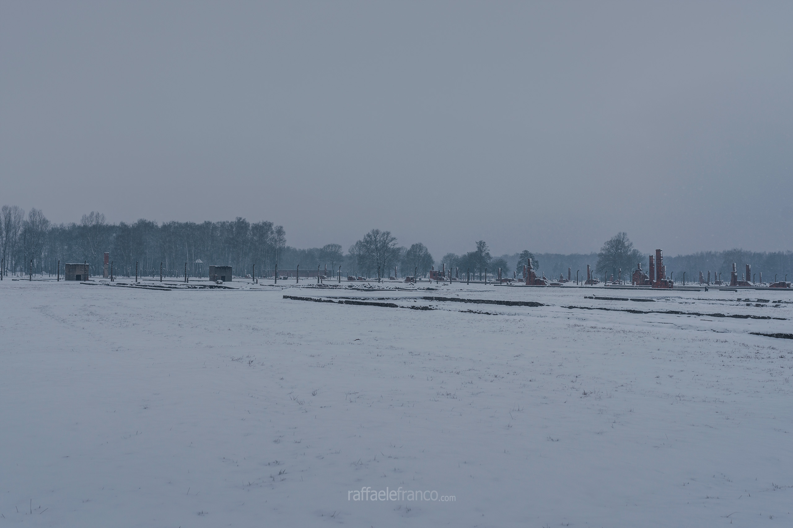Ciò che resta dell'infinita distesa di baracche di legno ad Auschwitz-Birkenau II